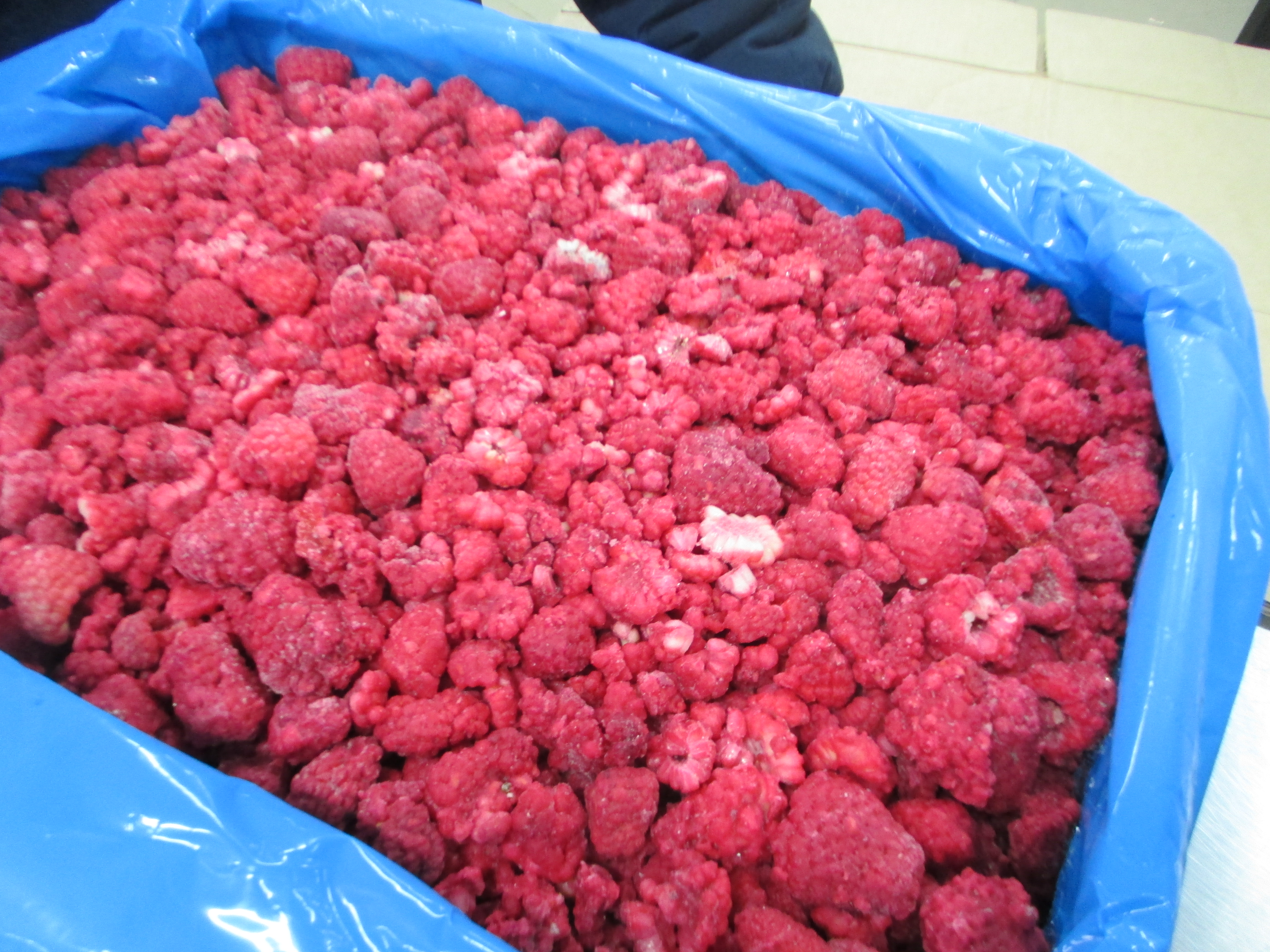 Congeladora Anahuac | IQF Raspberries Whole, Broken and Pieces